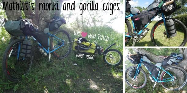 mathias-monkii-cages-and-gorillas