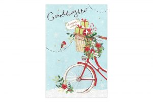 granddaughter-bicycle-christmas-card